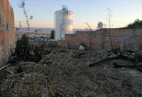 Foto de terreno habitacional en venta en camino de las cumbres 101, los remedios, durango, durango, 0 No. 01