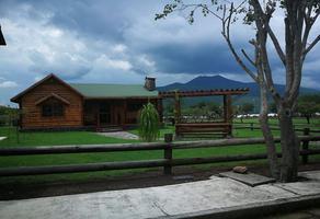 Foto de terreno habitacional en venta en camino de terraceria , el pescador, tangancícuaro, michoacán de ocampo, 19973668 No. 01