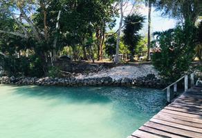 Foto de terreno habitacional en venta en camino de terraceria s/n , huaypix, othón p. blanco, quintana roo, 20303383 No. 01