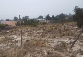 Foto de terreno habitacional en venta en camino del coyote 100 , lomas de lourdes, saltillo, coahuila de zaragoza, 14424151 No. 01
