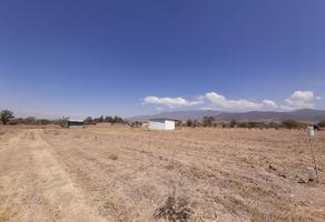 Foto de terreno habitacional en venta en camino del cura sin número, tlalixtac de cabrera, tlalixtac de cabrera, oaxaca, 0 No. 01