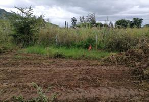 Foto de terreno habitacional en venta en camino del tarrastro , tlalixtac de cabrera, tlalixtac de cabrera, oaxaca, 0 No. 01
