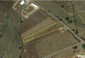 Foto de terreno habitacional en venta en camino empedrado a amatitan , amatitan, amatitán, jalisco, 6292931 No. 01