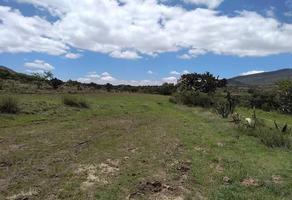 Foto de terreno habitacional en venta en camino nacional , san juan teacalco, temascalapa, méxico, 14878344 No. 01