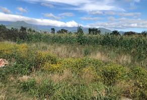 Foto de terreno habitacional en venta en camino nacional , san miguel 2a sección, tlalixtac de cabrera, oaxaca, 18947166 No. 01