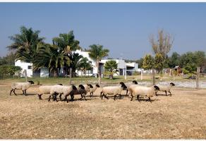 Foto de rancho en venta en camino pirules -, hacienda galindo, querétaro, querétaro, 0 No. 01