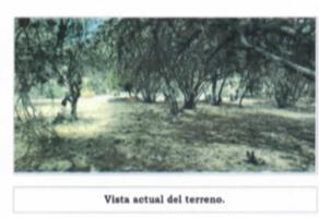 Foto de terreno comercial en venta en camino puerta de los monos 1141, alquerías de pozos, san luis potosí, san luis potosí, 20582495 No. 01