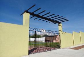 Foto de terreno habitacional en venta en camino real 1, sumiya, jiutepec, morelos, 0 No. 01