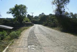 Foto de terreno habitacional en venta en camino real agua verde , copandaro, salvador escalante, michoacán de ocampo, 18743381 No. 01