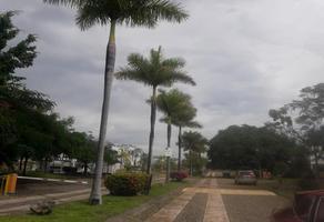 Foto de terreno habitacional en venta en  , camino real, colima, colima, 8512616 No. 01