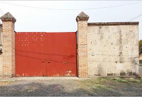Foto de terreno habitacional en venta en camino real , las pintas, el salto, jalisco, 5251535 No. 02