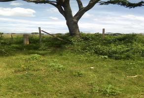 Foto de terreno habitacional en venta en camino real y quinta privada de constitución , san antonio, tlalixtac de cabrera, oaxaca, 0 No. 01
