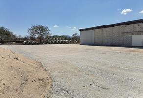 Foto de nave industrial en renta en camino rural a pacú , terán, tuxtla gutiérrez, chiapas, 0 No. 01