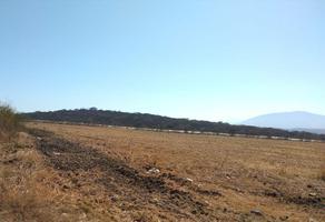 Foto de terreno comercial en venta en camino rural , zamora de hidalgo centro, zamora, michoacán de ocampo, 19987696 No. 01