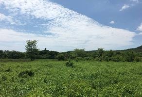 Foto de terreno comercial en venta en camino saca cosechas la palma - cocodrilario , matanchen, san blas, nayarit, 0 No. 01