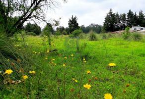 Foto de terreno habitacional en venta en camino sin nombre, el fresno , valle de bravo, valle de bravo, méxico, 0 No. 01