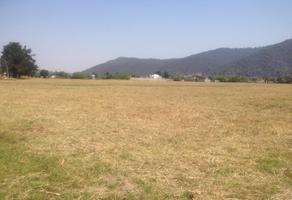 Foto de terreno habitacional en venta en camino sin nombre s/n , santa isabel chalma, amecameca, méxico, 6561125 No. 01