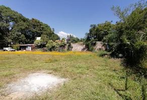 Foto de terreno comercial en renta en camino tioosba , tlalixtac de cabrera, tlalixtac de cabrera, oaxaca, 18535560 No. 01