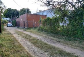 Foto de terreno habitacional en venta en camino tioosba , tlalixtac de cabrera, tlalixtac de cabrera, oaxaca, 0 No. 01