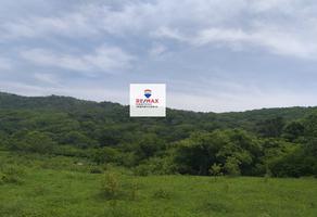 Foto de terreno comercial en venta en camino , unidad agrícola, san pedro tapanatepec, oaxaca, 7654005 No. 01
