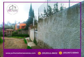 Foto de terreno habitacional en venta en camino vecinal , cruz de mayo, tlalmanalco, méxico, 0 No. 01