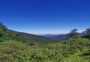 Foto de terreno comercial en venta en camino vecinal , jilotepec, zacapoaxtla, puebla, 6418277 No. 01