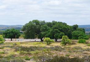 Foto de terreno habitacional en venta en camino vecinal kilometro 10, carretera el hongo - ojos n , tecate centro, tecate, baja california, 18398045 No. 01