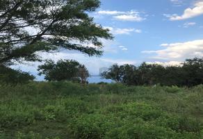 Foto de terreno comercial en venta en camino vecinal , la venadera o san antonio, doctor gonzález, nuevo león, 7552943 No. 01