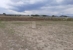 Foto de terreno comercial en venta en camino vecinal , tequisistlan, tezoyuca, méxico, 14828330 No. 01