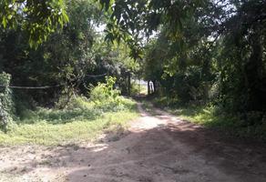 Foto de terreno habitacional en venta en camino zipolite puerto angel sin numero , puerto angel, san pedro pochutla, oaxaca, 0 No. 01
