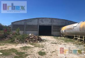 Foto de nave industrial en renta en  , colonial campeche, campeche, campeche, 11731114 No. 01