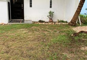Foto de departamento en renta en  , colonial campeche, campeche, campeche, 15374213 No. 01
