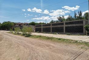 Foto de terreno habitacional en venta en campestre , cañada de cervera, guanajuato, guanajuato, 0 No. 01