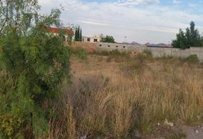 Foto de terreno habitacional en venta en  , campestre las carolinas, chihuahua, chihuahua, 17241752 No. 01