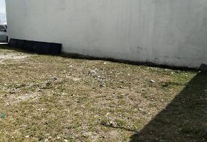 Foto de terreno habitacional en venta en  , campestre los pinos, zapopan, jalisco, 0 No. 01