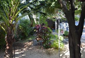 Foto de casa en renta en  , campestre, mérida, yucatán, 12531025 No. 01