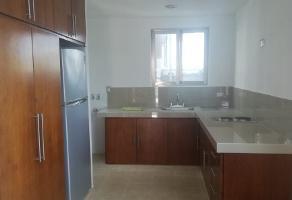 Foto de departamento en renta en  , campestre, mérida, yucatán, 14038581 No. 01