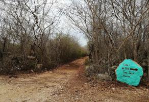 Foto de terreno habitacional en venta en  , campestre, mérida, yucatán, 6900338 No. 01