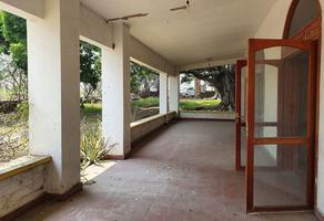 Foto de local en venta en campo chamilpa , centro, yautepec, morelos, 19520711 No. 01