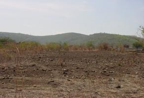 Foto de terreno habitacional en venta en campo chimalpa , diego ruiz, yautepec, morelos, 18896764 No. 01
