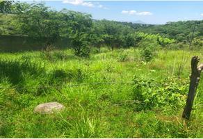 Foto de terreno comercial en venta en campo e charco y cuxcomac sin numero, alpuyeca, xochitepec, morelos, 9160102 No. 01
