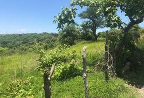 Foto de terreno habitacional en venta en campo el charco y cuaxcomac , alpuyeca, xochitepec, morelos, 0 No. 01