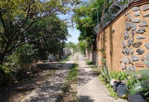 Foto de terreno habitacional en venta en campo encamzadero , temixco centro, temixco, morelos, 0 No. 01