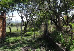 Foto de terreno habitacional en venta en campo san pablo , diego ruiz, yautepec, morelos, 6905362 No. 01