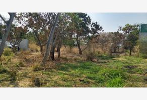 Foto de terreno comercial en venta en  , campo sotelo, temixco, morelos, 12918226 No. 01