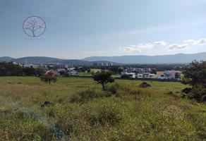 Foto de terreno habitacional en venta en  , campo sotelo, temixco, morelos, 14825015 No. 01