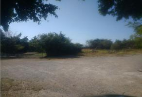Foto de terreno habitacional en venta en  , campo sotelo, temixco, morelos, 18100172 No. 01