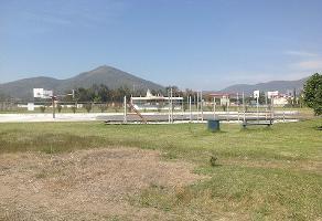 Foto de terreno habitacional en venta en  , campo sur, tlajomulco de zúñiga, jalisco, 3928176 No. 01