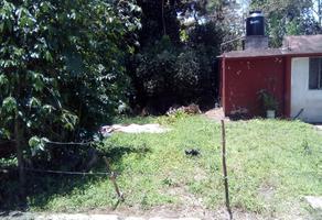Foto de terreno habitacional en venta en  , campo viejo, coatepec, veracruz de ignacio de la llave, 6697213 No. 01