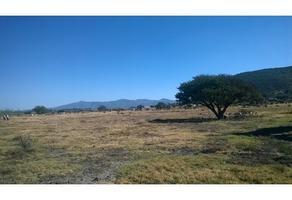 Foto de terreno habitacional en venta en  , cañajo, san miguel de allende, guanajuato, 13505414 No. 01